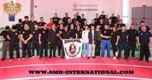 BRICPOL E SMD